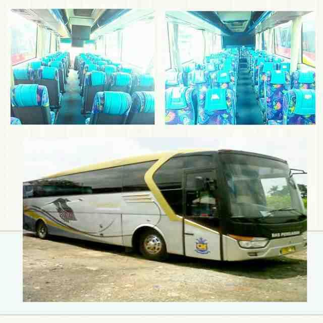 Foto: Sewa Bus Pariwisata